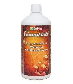 B Essentials 1L - GHE