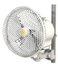 Monkey Fan 20 Oscillating 20w