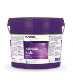 PLAGRON Calcium Kick 5L