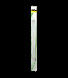 T-Neon Bulbs 55W