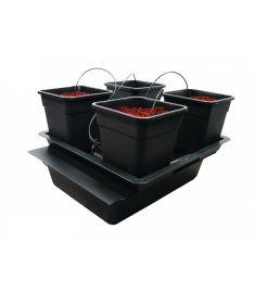 Wilma BIG 4 pot dripper system